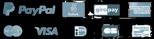 Logos payment a8dc3a52736fc3cab0deb3ab790cbc1fdcc90d1c8916e4c1bce159971c86feec