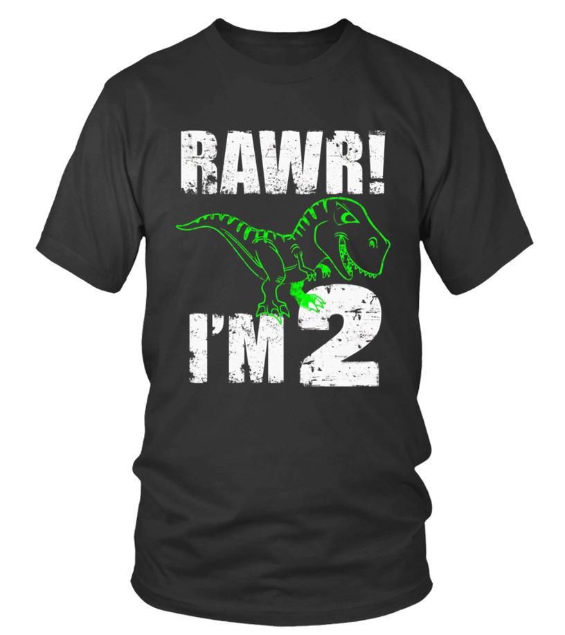 Kids 2nd Birthday Dinosaur Gift T Shirt For 2 Year Old Boys Girls